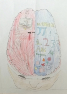 Brain Systems Drawing